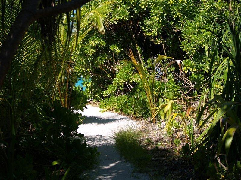 Unser Weg von Villa zum Strand