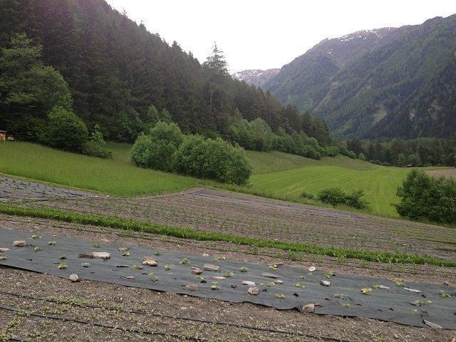 Kräutergärten Wipptal